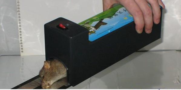 昆山灭鼠方法